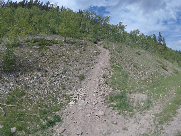 An image of the Prairie Mountain trail