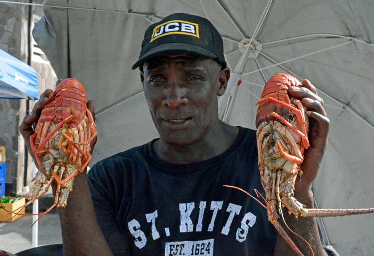 An image of a man holding two lobsters