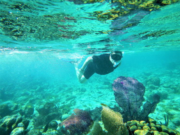 Image of a man snorkeling over coral formations in the South Water Caye Marine Reserve in Belize