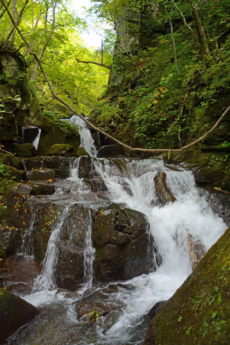 An image of a waterfall in Oirase Gorge near Aomori, Japan - Lake Towada and Oirase Gorge