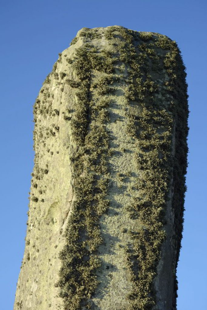 An image of lichen on the stones at the Stonhenge site near Salisbury, UK - Stonehenge inner circle tours
