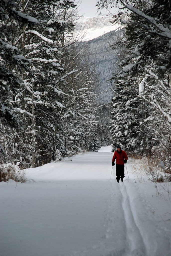 An image of a cross-country skier in Jasper National Park in Alberta, Canada - Jasper in Winter - 12 Stunning Photographs