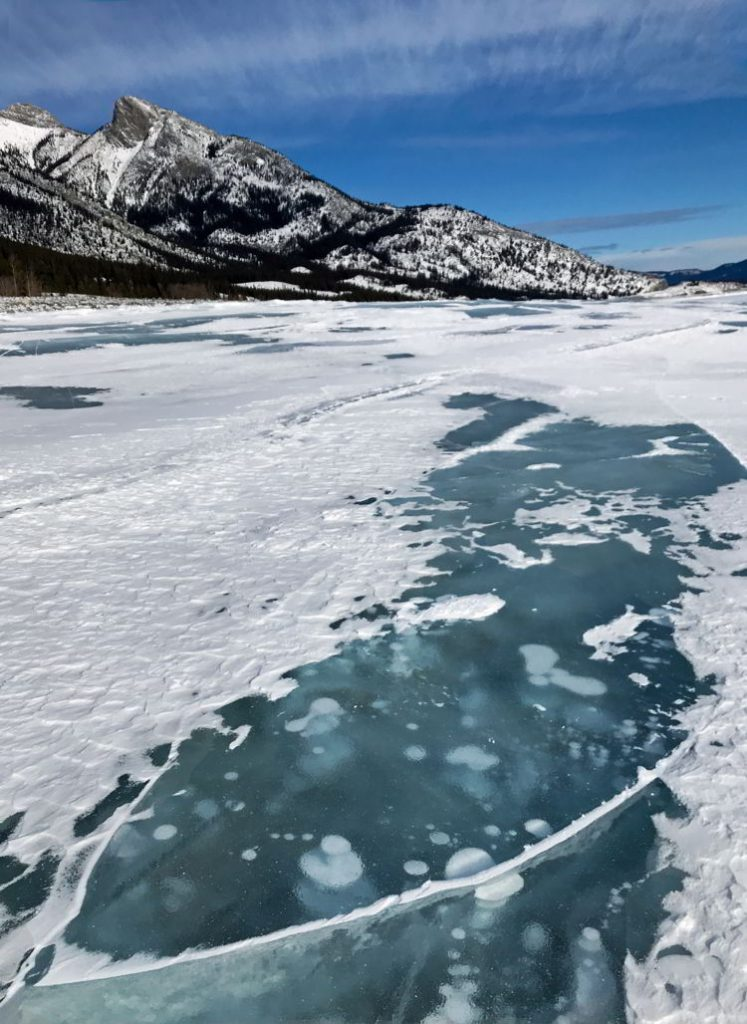 An image of the ice bubbles at Abraham Lake after a fresh snow. Abraham Lake, Alberta