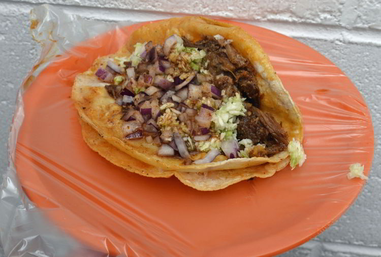 An image of a birria taco from Tacos Robles in Puerto Vallarta, Mexico - the best tacos in Puerto Vallarta