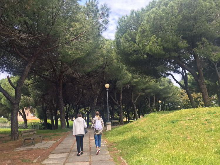 An image of the park and trees inside Fortrezza Nuova.