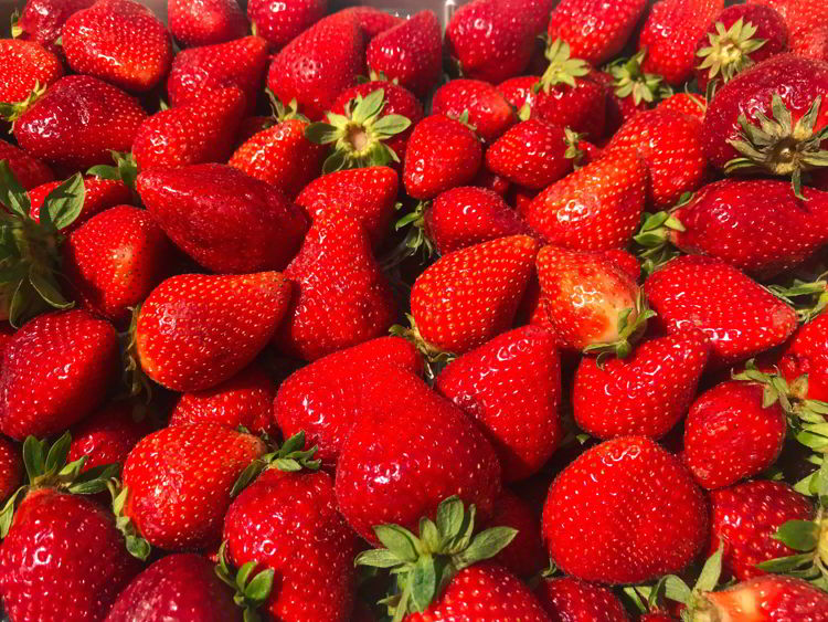 An image of vine-ripened Tuscan strawberries in Livorno, Italy.