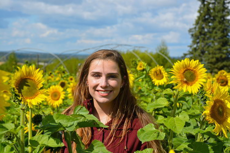 An image of a young woman surrounded by sunflowers at the Bowden Sunmaze in Alberta, Canada.