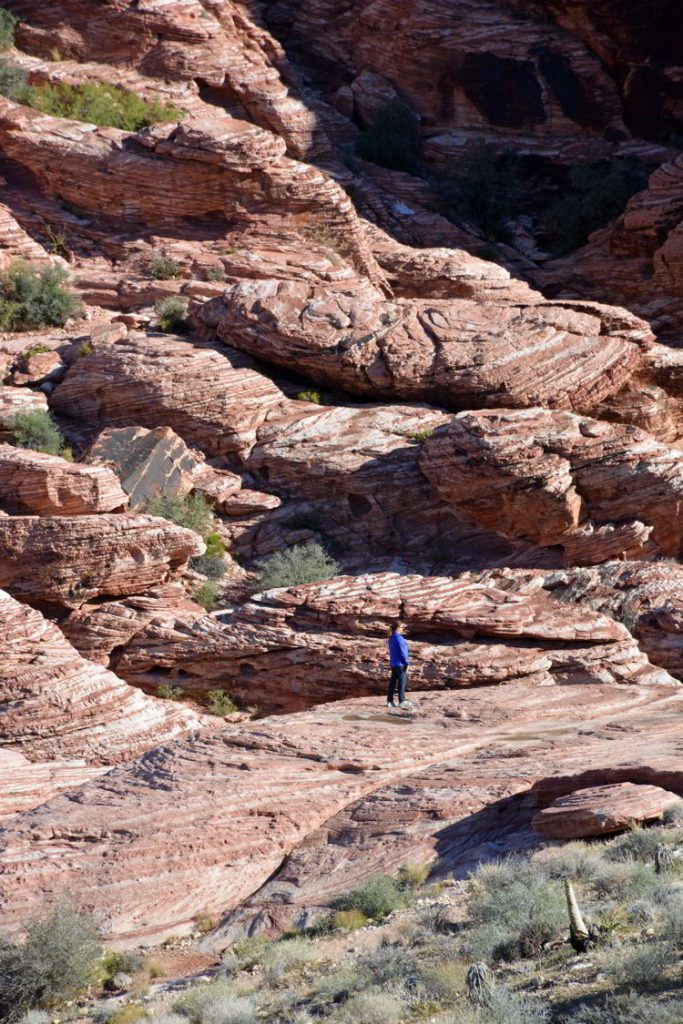 An image of a lone woman standing on the red rocks of Red Rock Canyon outside Las Vegas, Nevada.
