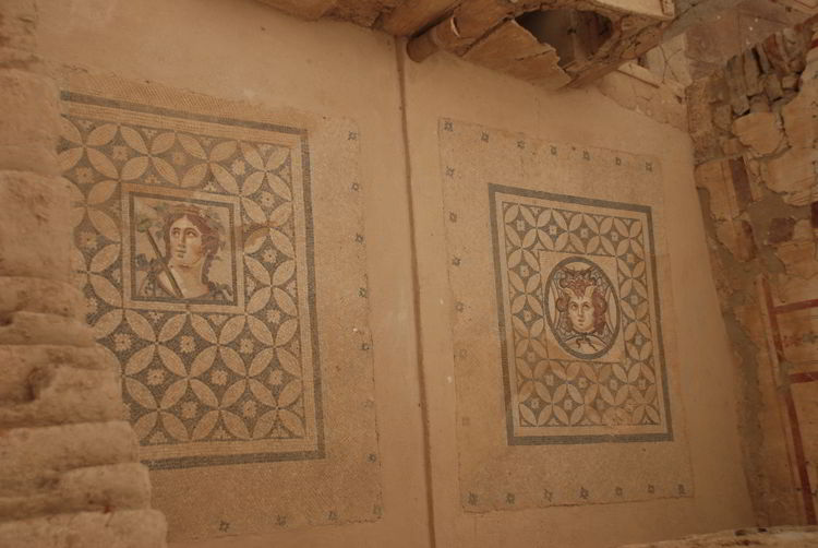 An image of the intricate tile work in the Terrace Houses in ancient Ephesus.