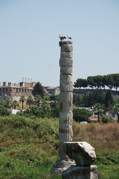 An image of the ruins of the Temple of Artemis near Ephesus, Turkey.