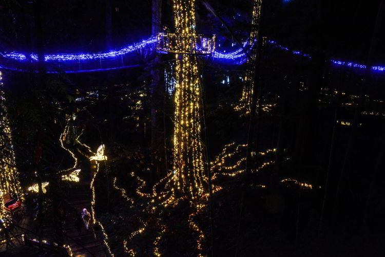 An image of the canopy walk at Canyon Lights at the Capilano Suspension Bridge in Vancouver, BC, Canada. Christmas lights in Vancouver.