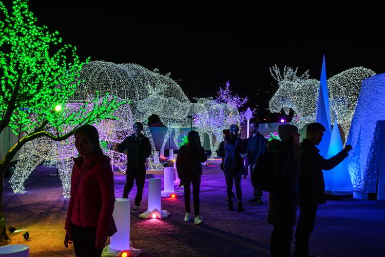 An image of people walking through the Christmas lights displays at the Aurora Winter Festival in Vancouver, BC, Canada.