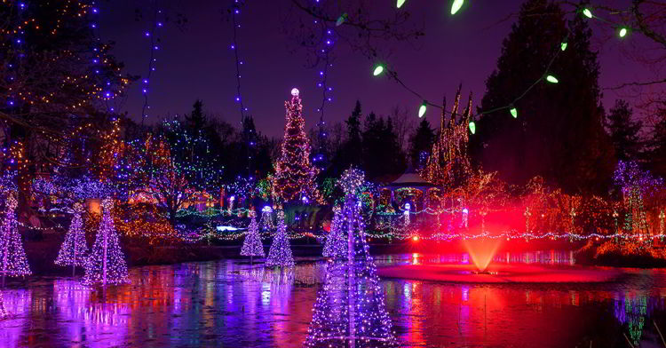 An image of the pond at the Vandusen Festival of Lights in Vancouver, BS, Canada. Christmas Lights in Vancouver.