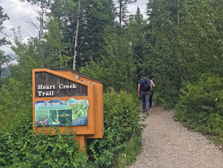 An image of the trailhead for the Heart Creek Trail and the Heart Mountain hike near Canmore, Alberta.