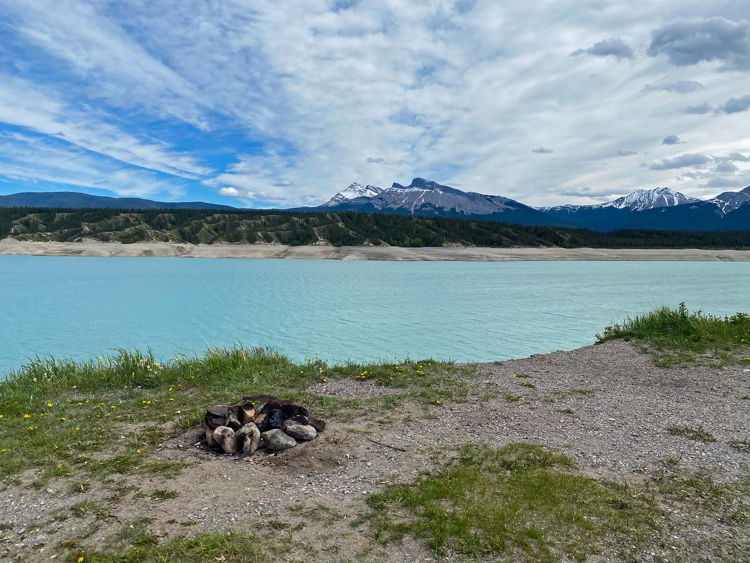 An image of a campsite overlooking Abraham Lake  in Bighorn Backcountry in Alberta, Canada.