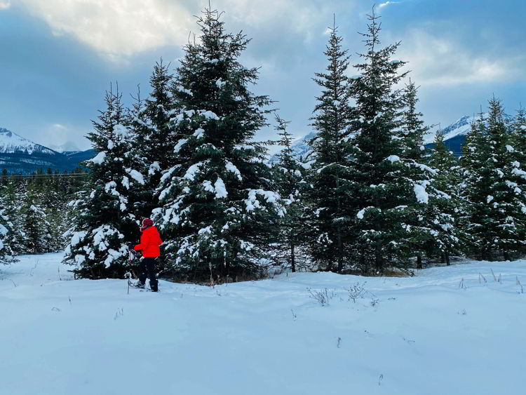 An image of a woman snowshoeing in the Canadian Rockies - snowshoe Canmore winter hikes